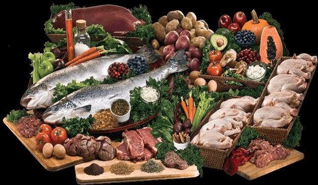 Rotačný princíp kŕmenia